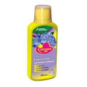 cvet rai gortenzii